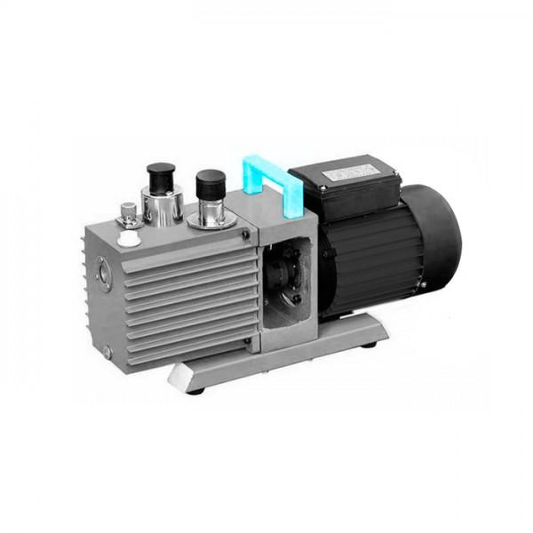 Bomba de vacío de Paletas Rotativas Direct Drive LDDVP-A10 Labtron